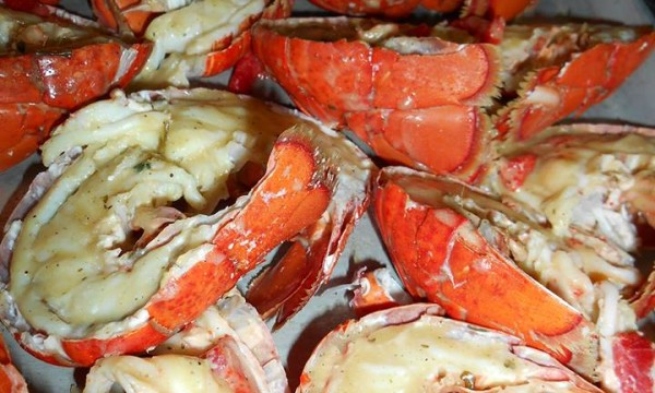 KGM Serves Lobster for Dinner